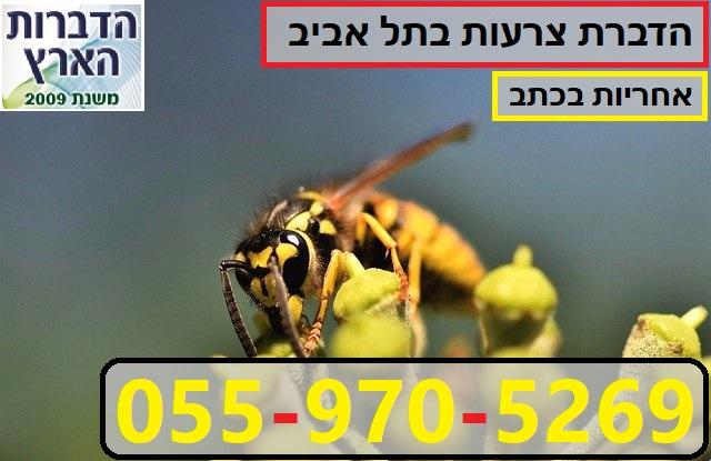 הדברת צרעות בתל אביב